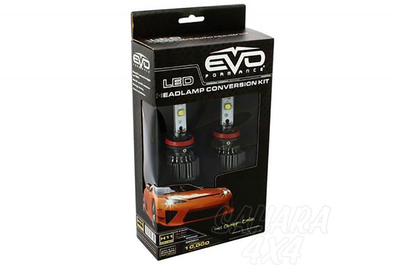 Kit de Conversión Bombillas H11 LED Evo Formance  - Sustituya sus antiguas bombillas por unas potentes de LED. Montaje fácil y rápido, no requiere ningún tipo de modificación eléctrica.